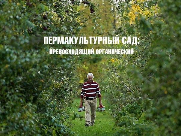 Пермакультурный сад - превосходящий органический.jpg