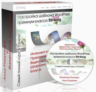 Разумова А. и Кулаева В. - Настройка шаблона WordPress премиум-класса Striking.jpg