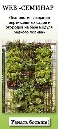 Технология создания вертикальных садов и огородов.jpg